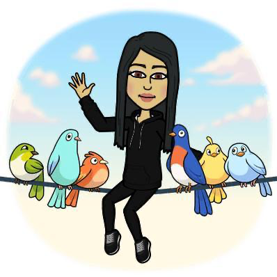 AJ Birds